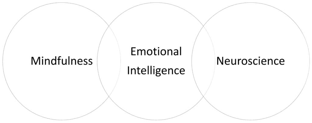 Mindfulness + Emotional Intelligence + Neuroscience = SIY